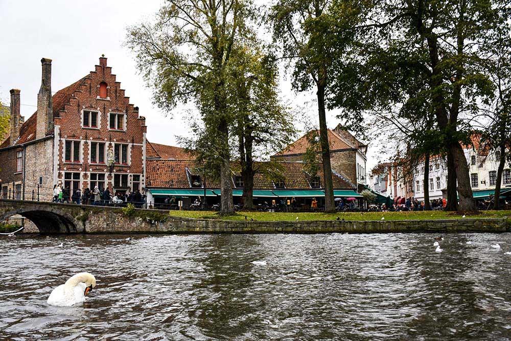 Cosa fare a Bruges: un tour in barca alla scoperta dei canali
