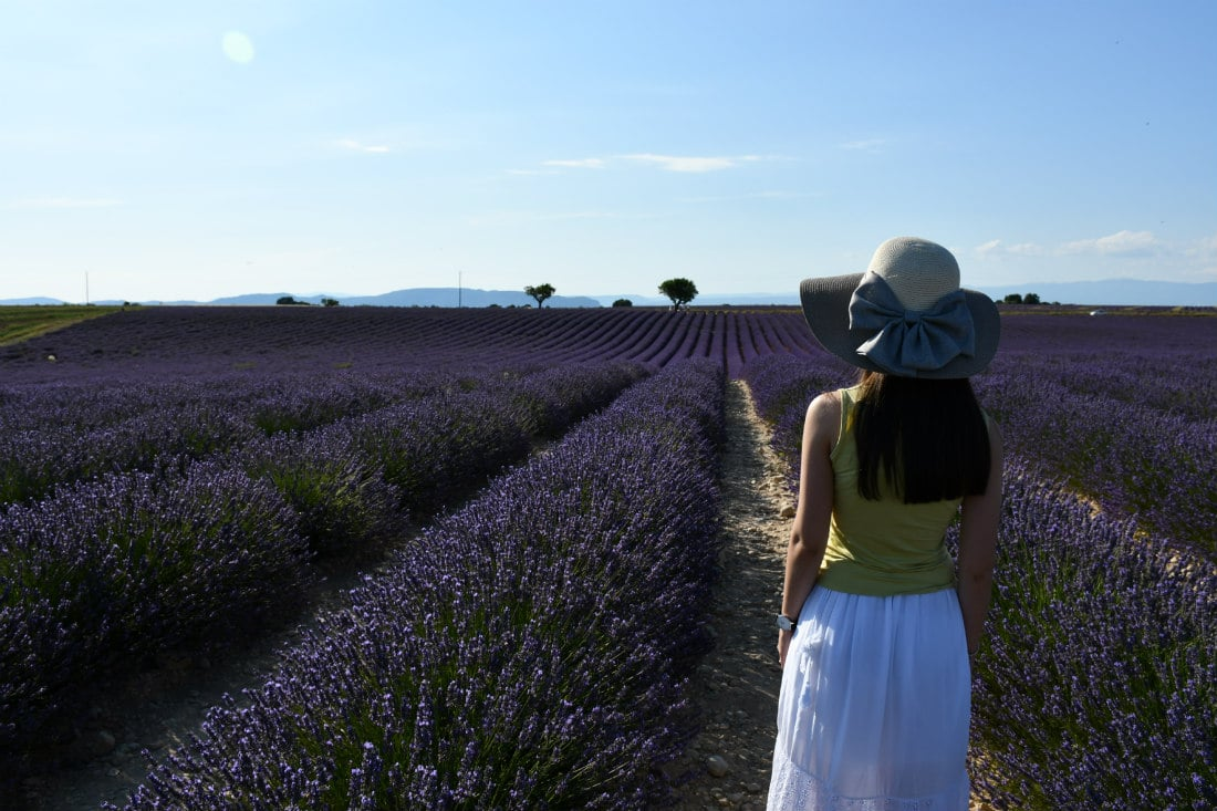 Provenza_tour della lavanda_Francia
