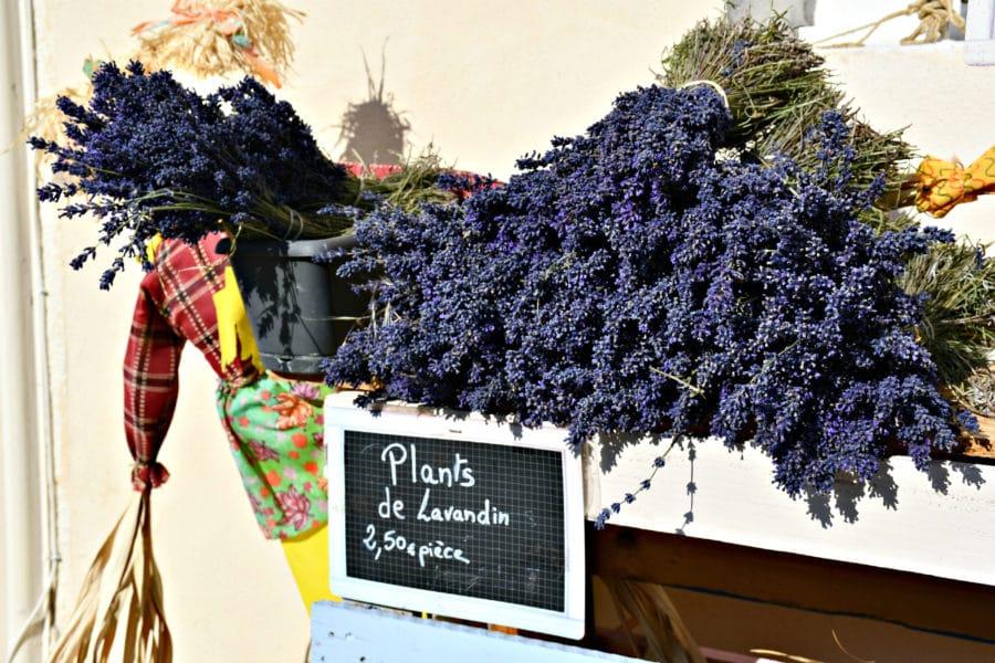 Lavanda_sault_tour della provenza