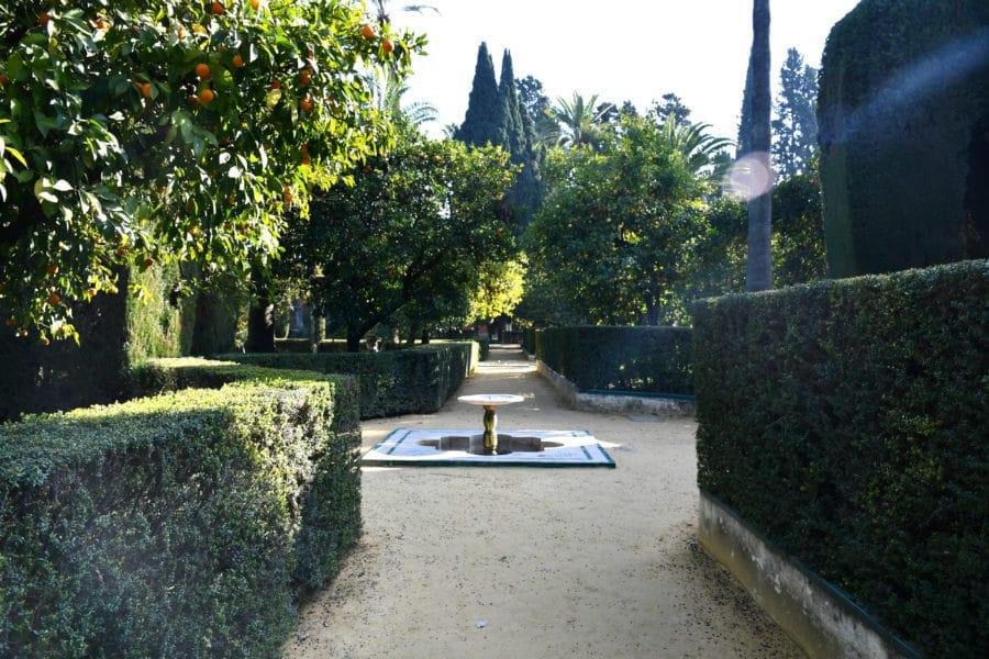 Visitare giardini_Real Alcazar_Siviglia
