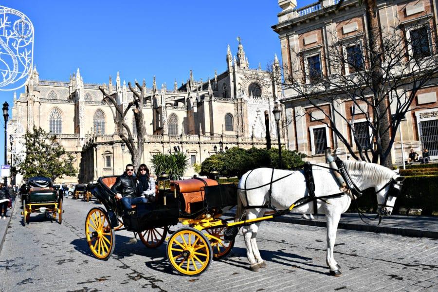 Tour in carrozza_cavallo_siviglia