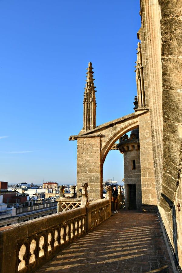 Cattedrale_Siviglia_visita guidata_tetti