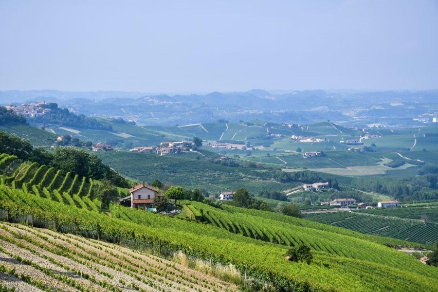 Langhe-Piemonte-La Morra