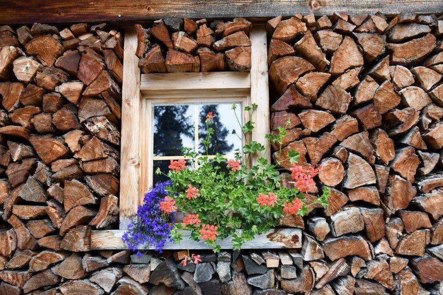 Morteratsch: fermate consigliate Trenino Rosso del Bernina