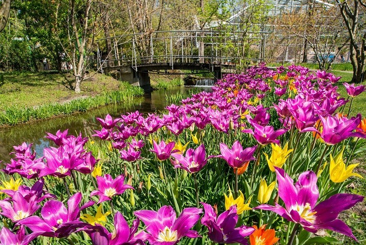 Giardini di Castel Trauttmansdorff: la visita virtuale