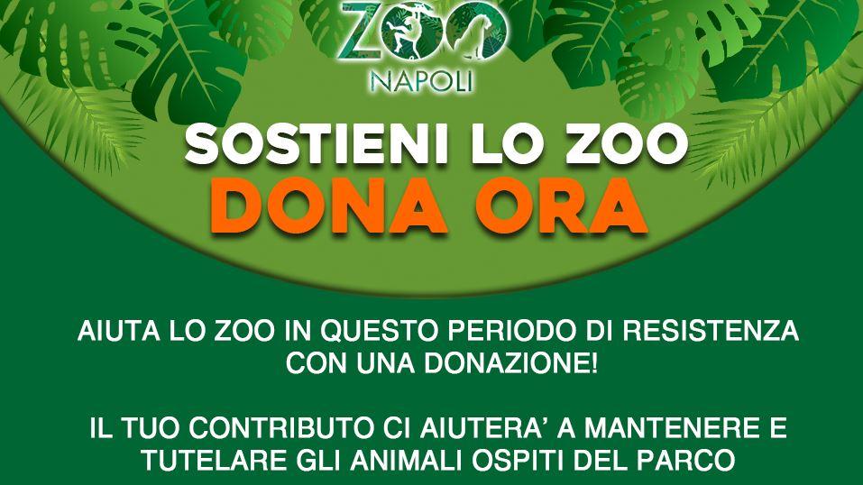 Sostieni lo Zoo di Napoli