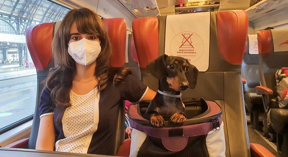 Cane in treno: consigli per viaggiare in sicurezza